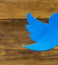 Twitter bird wood